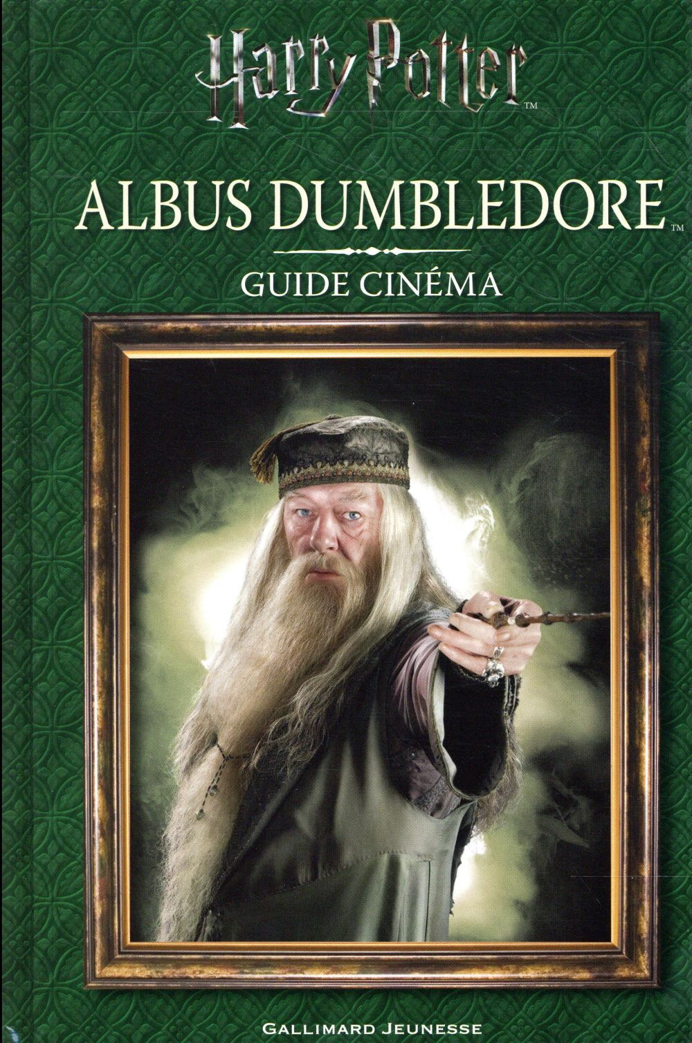 GUIDE CINEMA 4 : ALBUS DUMBLEDORE COLLECTIFS JEUNESSE Gallimard-Jeunesse